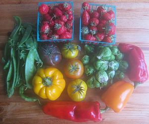 Vegetables and fruits from Sienna's local farmers market, November 2014