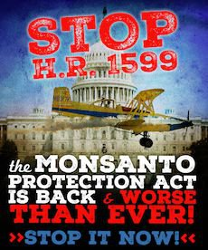 Don't let Monsanto Kill GMO labeling! Every voice counts! Don't let Congress corrupt our democracy and our food supply! Take Action Today!